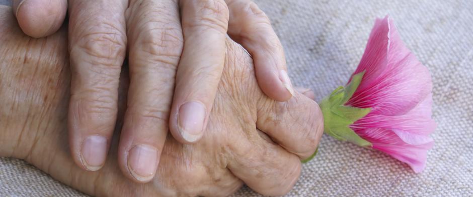Palliativmedizinische Grundversorgung